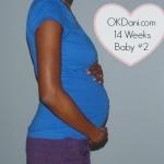 14 Weeks Pregnant Baby #2