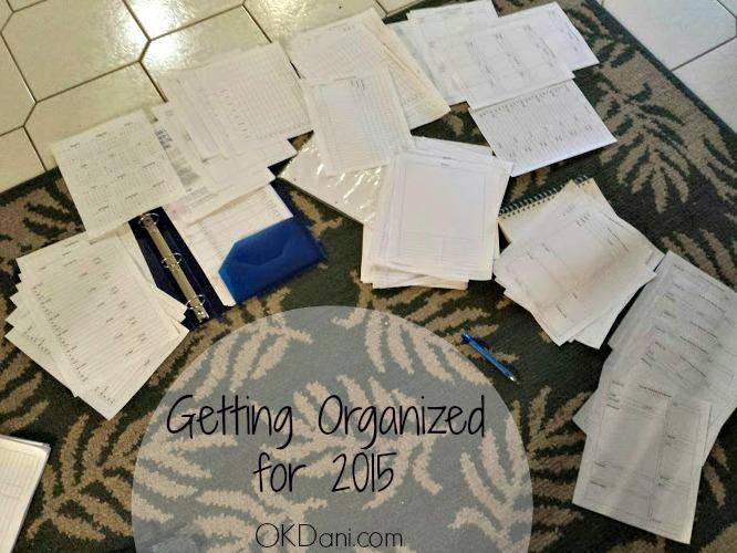 2015 planner mess okdani blog