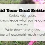 mid year goals